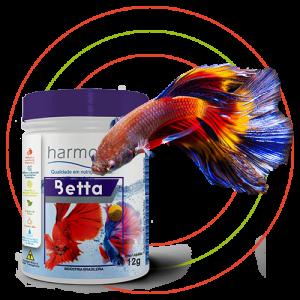 Harmony Fish